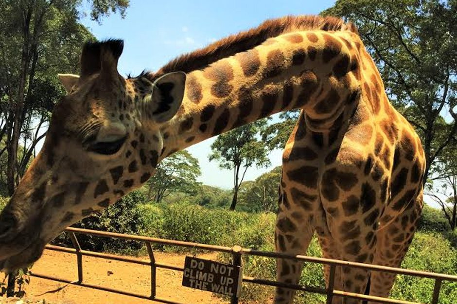 Must visit places in Nairobi