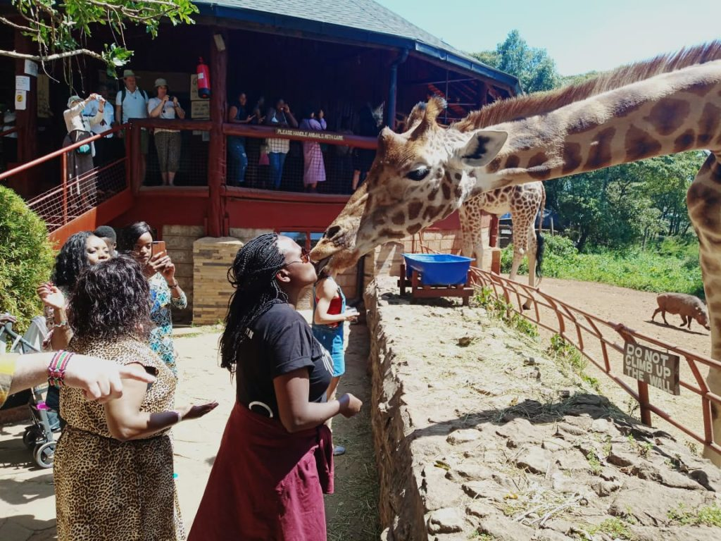 Giraffe center, Nairobi