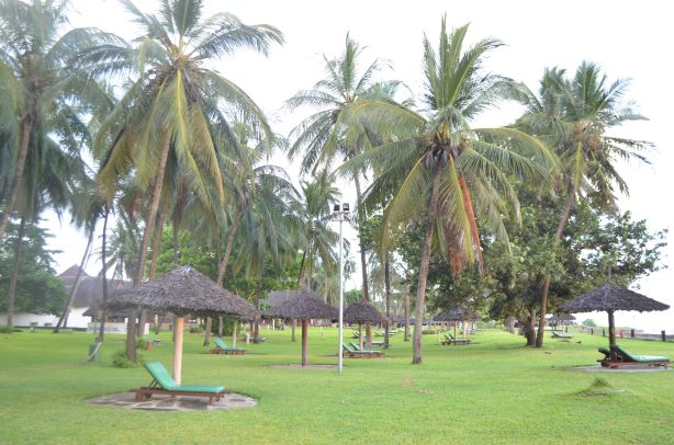 All inclusive hotel in Diani. Neptune Paradise Beach Resort & Spa